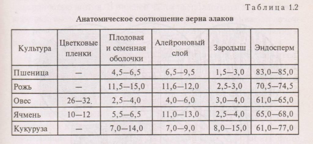 Анатомическое соотношение зерна злаков