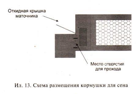 Схема размещения кормушки для сена