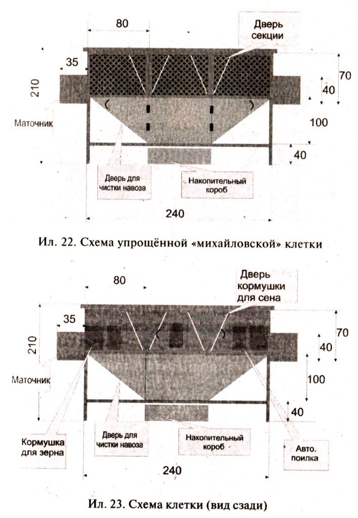 Схема михайловской клетки