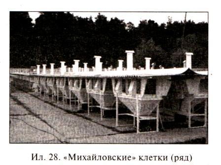 Михайловские клетки ряд