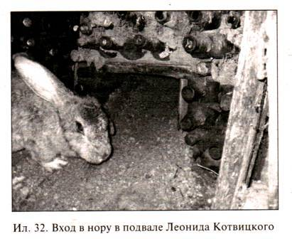 Вход в нору в подвале