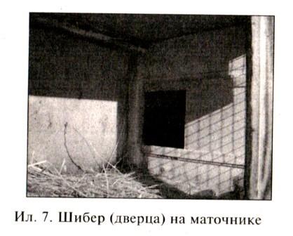 Шибер дверца на маточнике для кроликов
