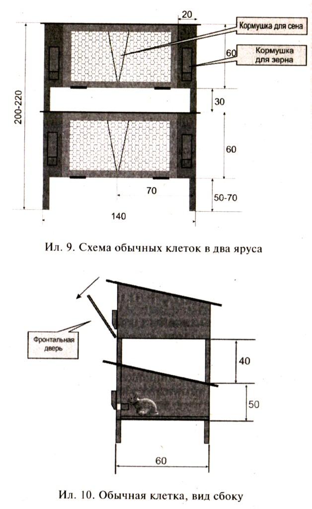 Схема размещения и вид обычных клеток для кроликов