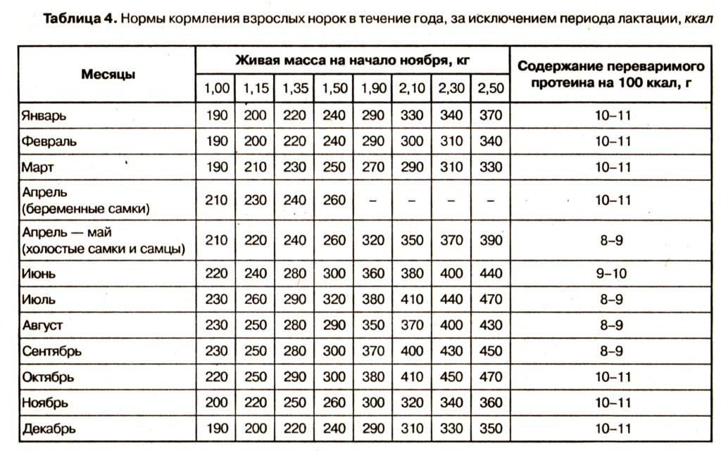 Нормы кормления взрослых норок в течение года, за исключением периода локтации