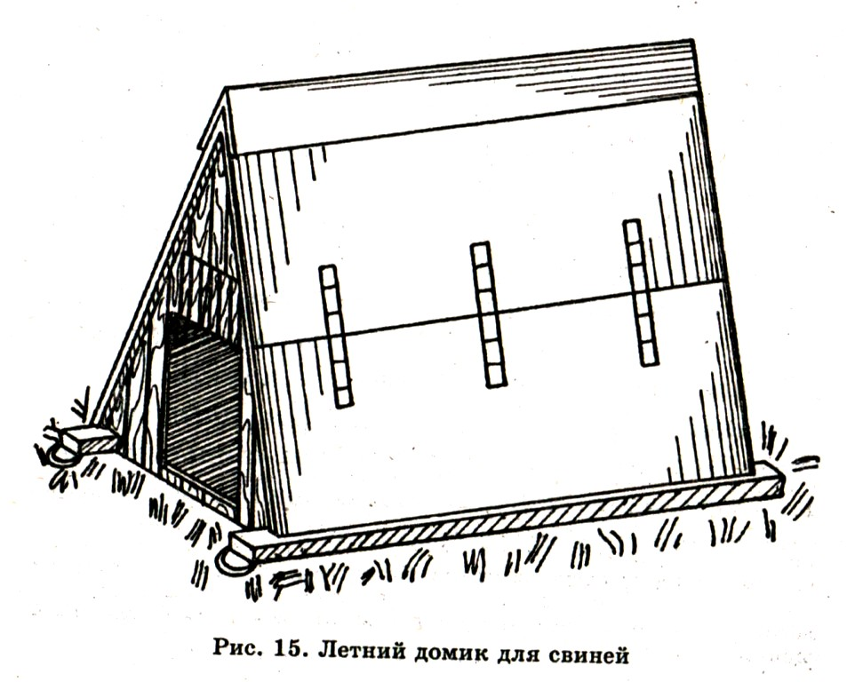 Как построить маленький свинарник своими руками 76