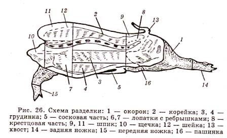 Схема разделки свинной туши